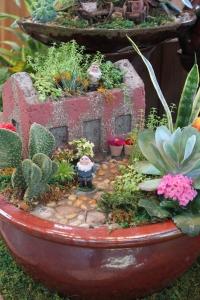 Gnome Succulent Garden